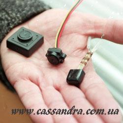 Детективное агентство Кассандра: проверка на прослушку