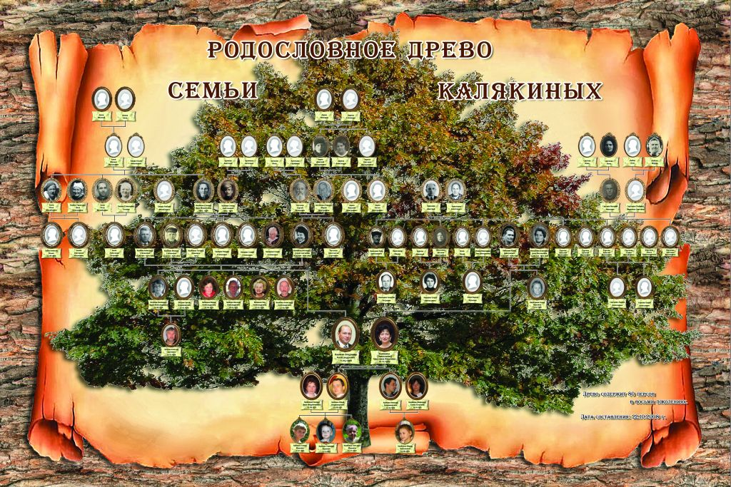 Как красиво оформить семейное древо